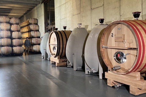 Im Weinkeller bei Finca Losada