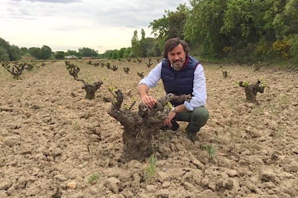 José Jiménez-Landi in einem Weinberg am Ortsrand von Méntrida.