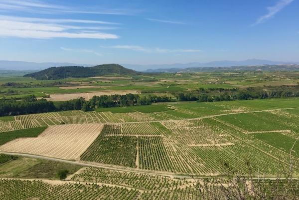 Blick aufs Ebrotal und - ganz im Hintergrund - die Sierra de la Demanda