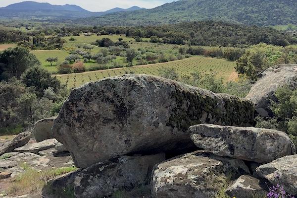Grantit ist ein prägender Faktor der Gredos-Weine. Der Stein verwittert und vermischt sich mit dem Sandboden