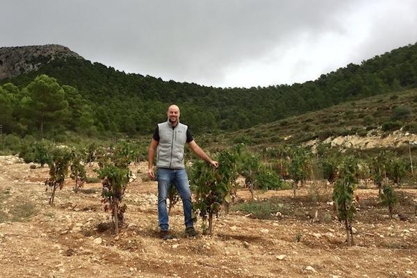 Javier Revert mit Arcos-Reben, die er vor einigen Jahren gepflanzt hat.