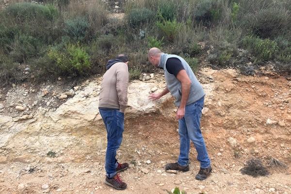 Javier Revert und Peter begutachten den im Weinberg vorherrschenden Kalkstein.